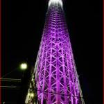 2015年の東京都内イルミネーションランキングです!穴場はここだ!