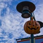 都内で外せない4つのハロウィンイベント!ハロウィン時期のクラブ必勝法も教えます。